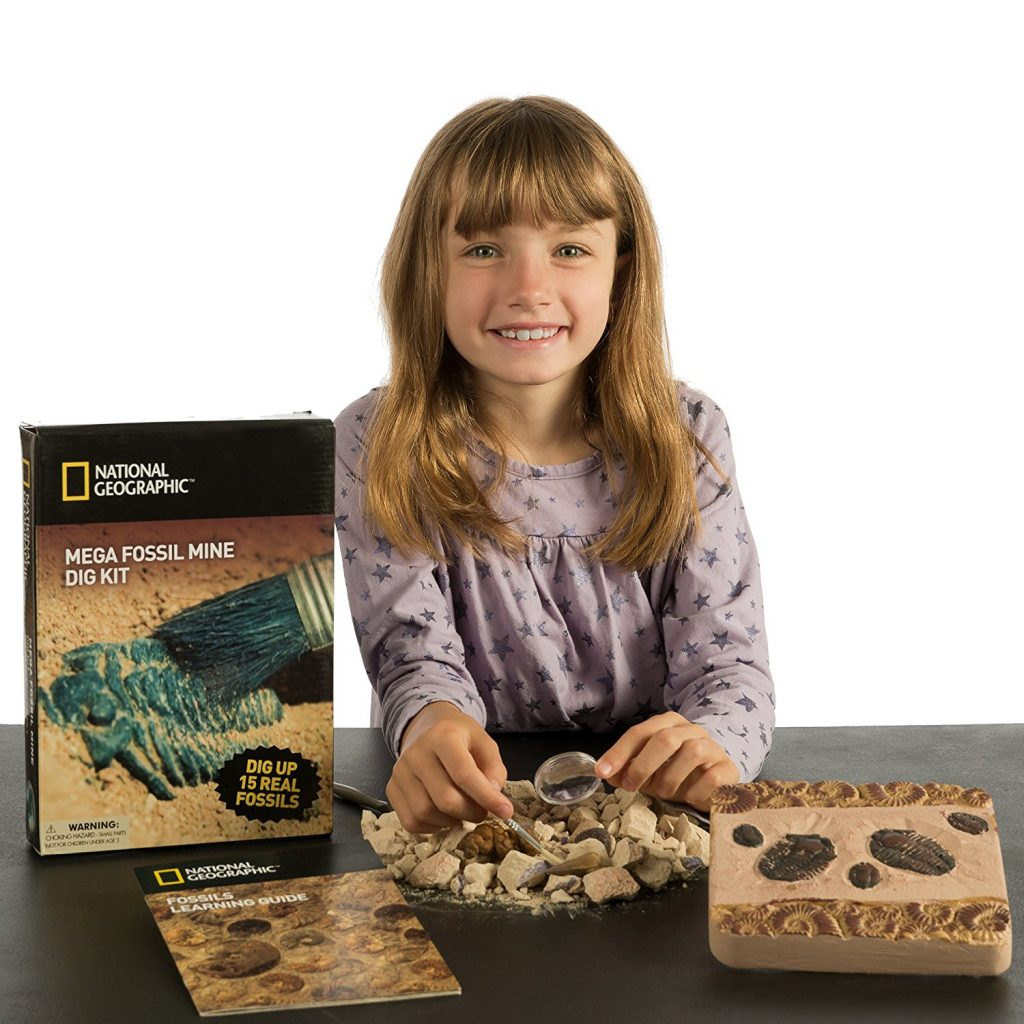 Mega Fossil Mine - Dig Up 15 Real Fossils by National Geographic